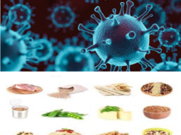 List of 5 Best Foods That Cure Coronavirus